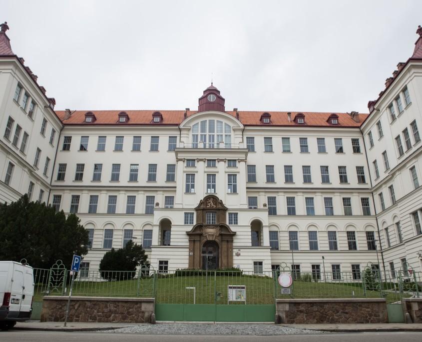 Ochrana proti plísním - nátěr proti mechům, plísním Brno